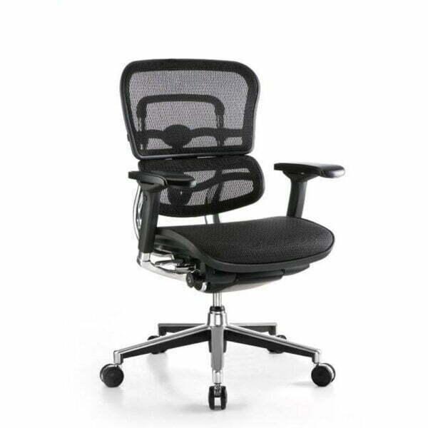 Ergohuman chair without headrest