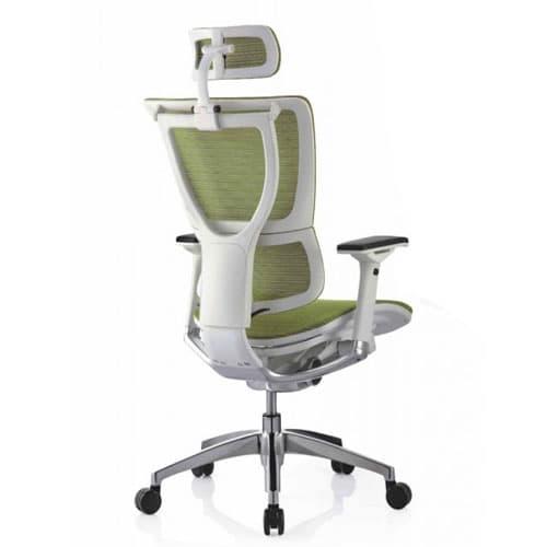 classic ergonomic chair 1