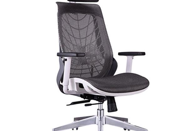 spyder ergonomic chair